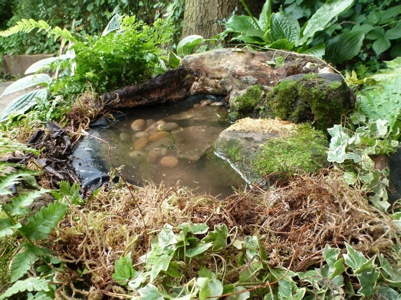 Wildlife garden DIY pond