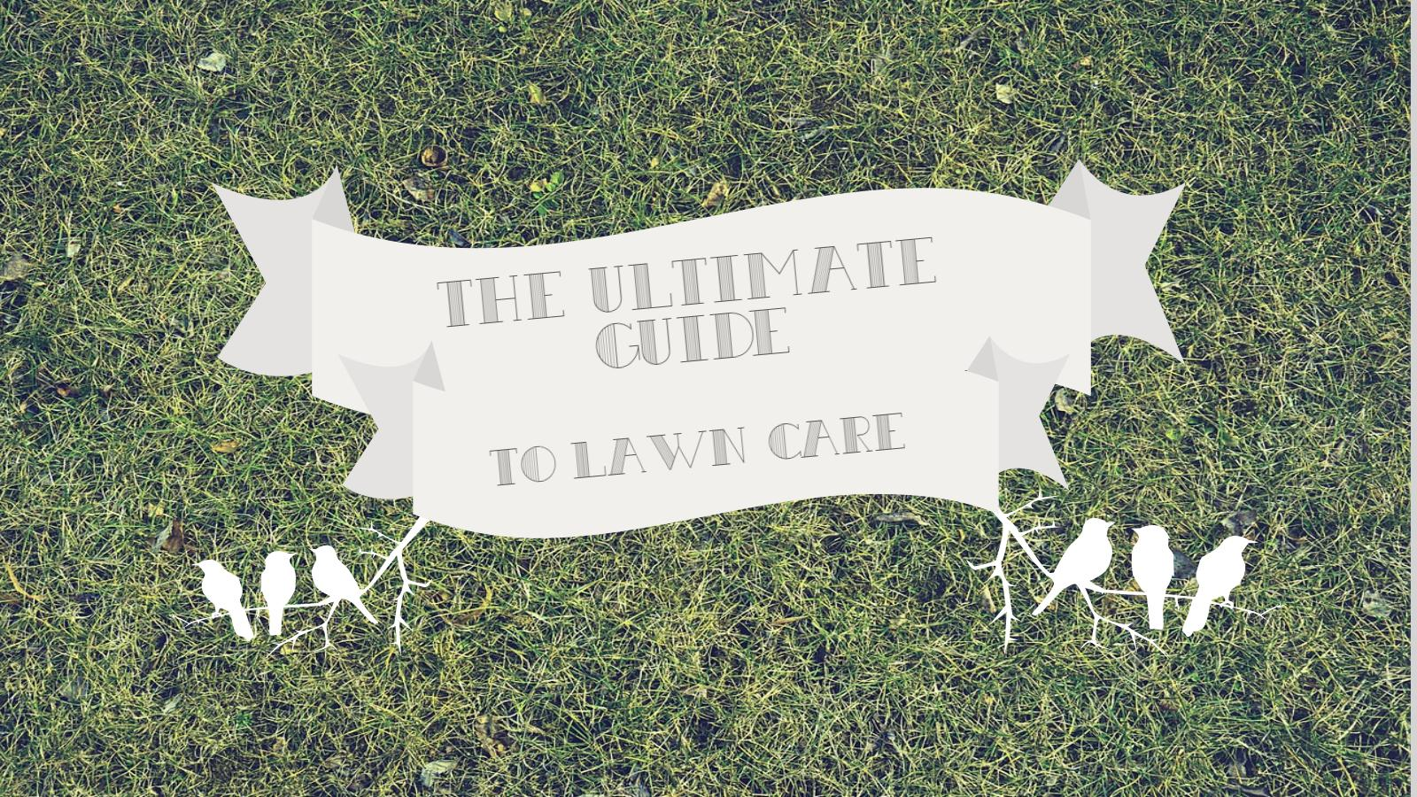 ultimate guide to lawn care banner